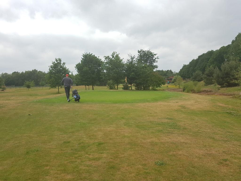 golf in ees